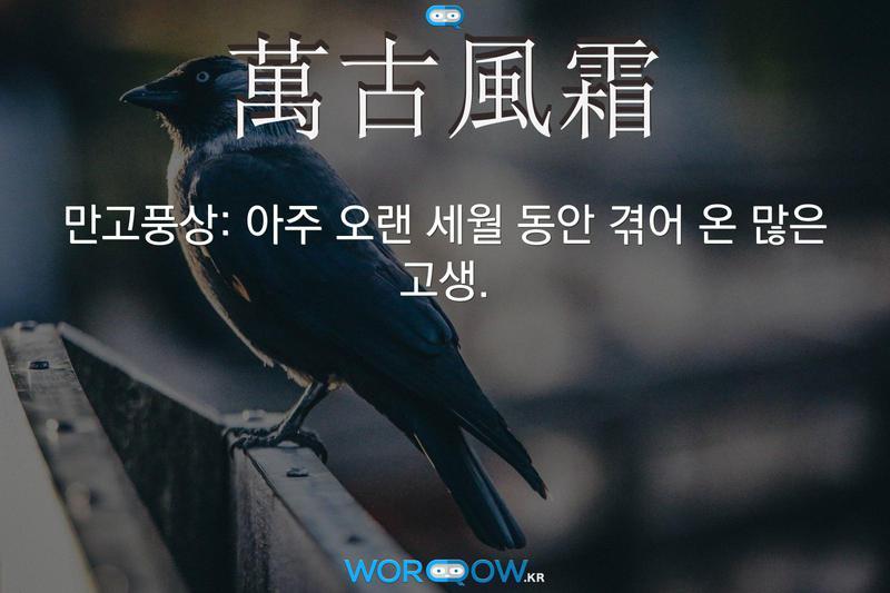 萬古風霜(만고풍상): 아주 오랜 세월 동안 겪어 온 많은 고생.