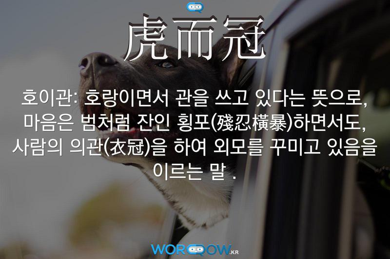 虎而冠(호이관): 호랑이면서 관을 쓰고 있다는 뜻으로, 마음은 범처럼 잔인 횡포(殘忍橫暴)하면서도, 사람의 의관(衣冠)을 하여 외모를 꾸미고 있음을 이르는 말 .