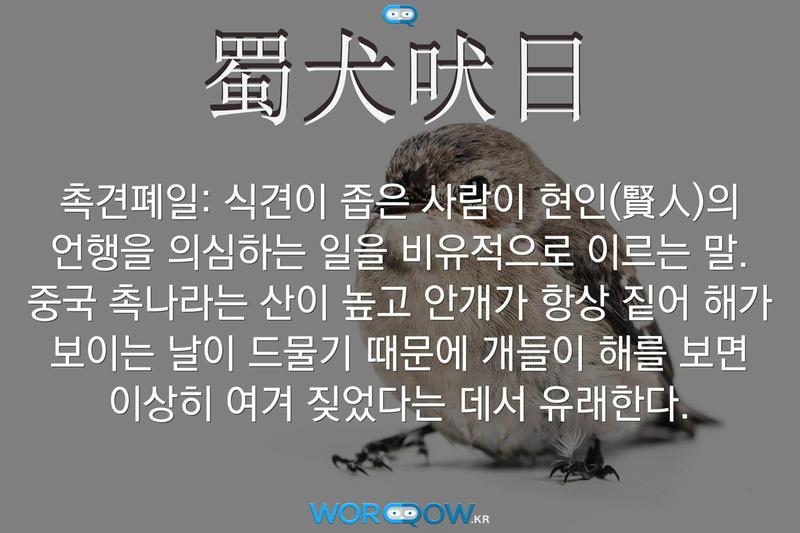 蜀犬吠日(촉견폐일): 식견이 좁은 사람이 현인(賢人)의 언행을 의심하는 일을 비유적으로 이르는 말. 중국 촉나라는 산이 높고 안개가 항상 짙어 해가 보이는 날이 드물기 때문에 개들이 해를 보면 이상히 여겨 짖었다는 데서 유래한다.