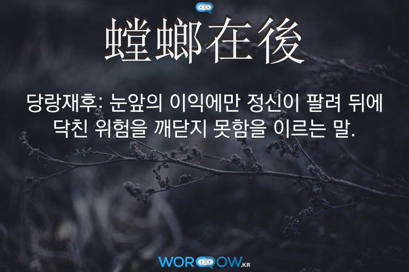 螳螂在後(당랑재후): 눈앞의 이익에만 정신이 팔려 뒤에 닥친 위험을 깨닫지 못함을 이르는 말.