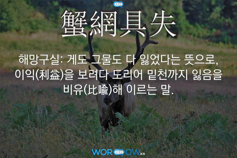 蟹網具失(해망구실): 게도 그물도 다 잃었다는 뜻으로, 이익(利益)을 보려다 도리어 밑천까지 잃음을 비유(比喩)해 이르는 말.