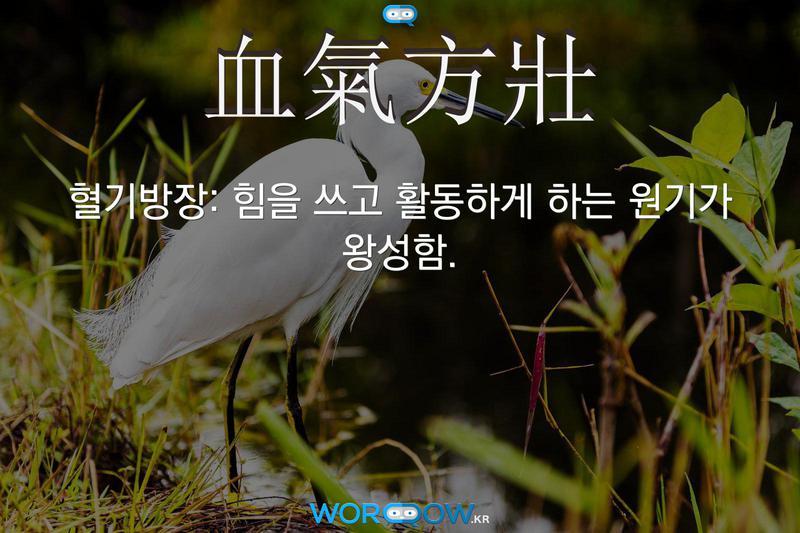 血氣方壯(혈기방장): 힘을 쓰고 활동하게 하는 원기가 왕성함.