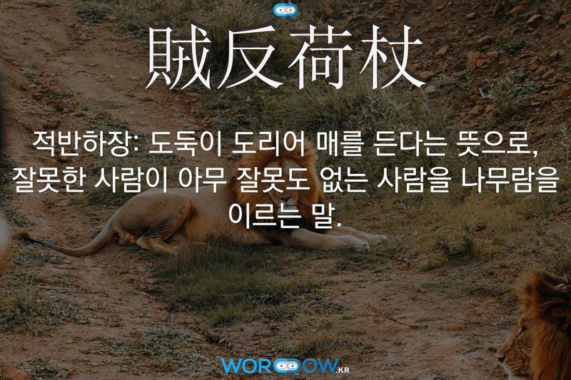 賊反荷杖(적반하장): 도둑이 도리어 매를 든다는 뜻으로, 잘못한 사람이 아무 잘못도 없는 사람을 나무람을 이르는 말.