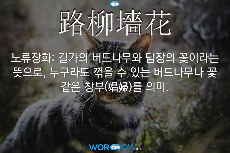 路柳墻花(노류장화): 길가의 버드나무와 담장의 꽃이라는 뜻으로, 누구라도 꺾을 수 있는 버드나무나 꽃 같은 창부(娼婦)를 의미.