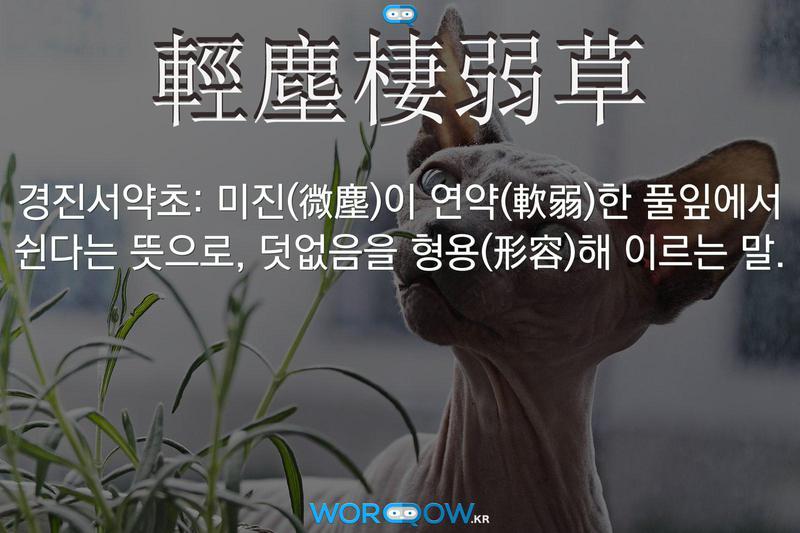 輕塵棲弱草(경진서약초): 미진(微塵)이 연약(軟弱)한 풀잎에서 쉰다는 뜻으로, 덧없음을 형용(形容)해 이르는 말.