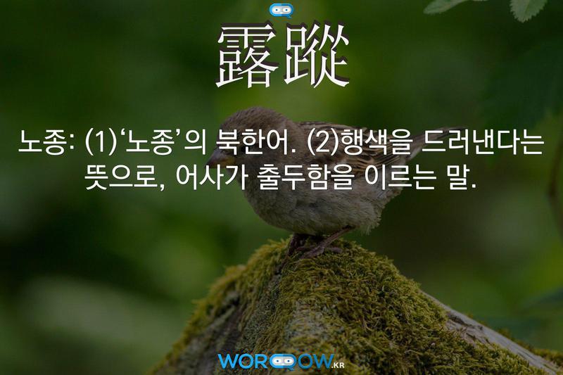 露蹤(노종): (1)'노종'의 북한어. (2)행색을 드러낸다는 뜻으로, 어사가 출두함을 이르는 말.