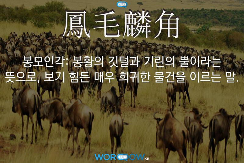鳳毛麟角(봉모인각): 봉황의 깃털과 기린의 뿔이라는 뜻으로, 보기 힘든 매우 희귀한 물건을 이르는 말.