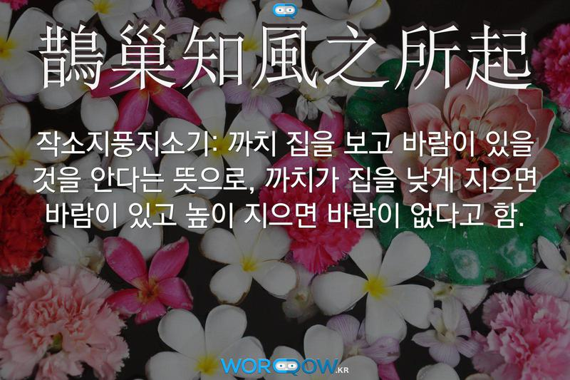 鵲巢知風之所起(작소지풍지소기): 까치 집을 보고 바람이 있을 것을 안다는 뜻으로, 까치가 집을 낮게 지으면 바람이 있고 높이 지으면 바람이 없다고 함.