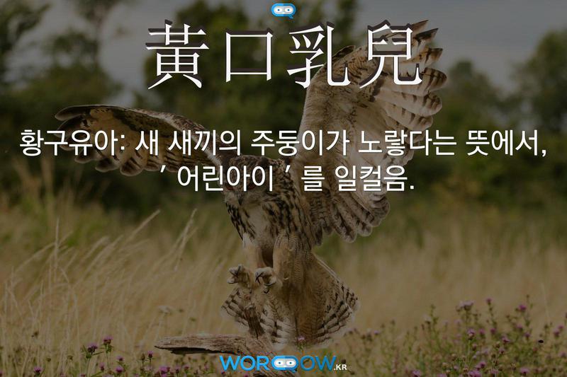 黃口乳兒(황구유아): 새 새끼의 주둥이가 노랗다는 뜻에서, '어린아이'를 일컬음.