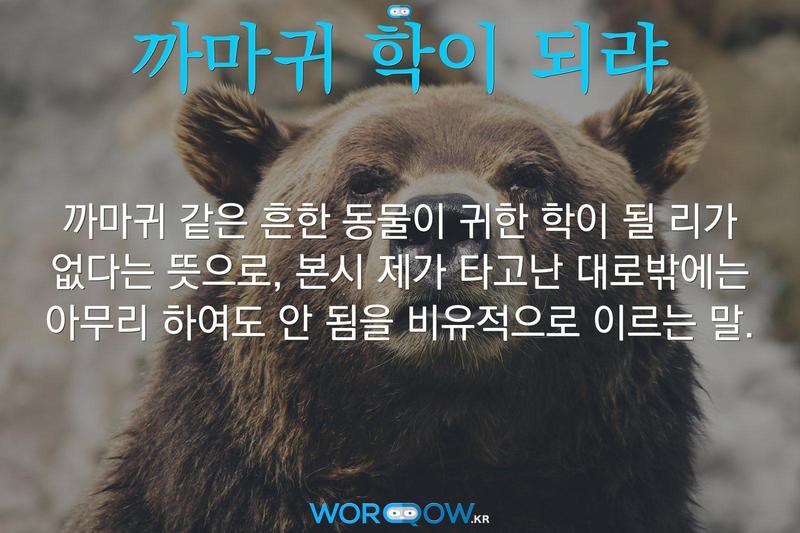 까마귀 학이 되랴의 의미: 까마귀 같은 흔한 동물이 귀한 학이 될 리가 없다는 뜻으로, 본시 제가 타고난 대로밖에는 아무리 하여도 안 됨을 비유적으로 이르는 말.