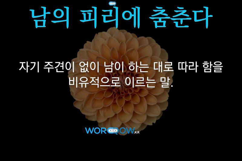 남의 피리에 춤춘다의 의미: 자기 주견이 없이 남이 하는 대로 따라 함을 비유적으로 이르는 말.