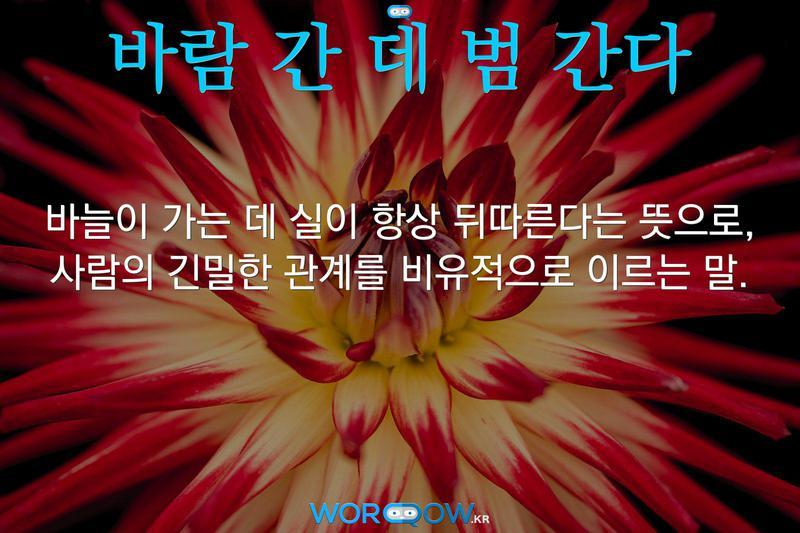 바람 간 데 범 간다: 바늘이 가는 데 실이 항상 뒤따른다는 뜻으로, 사람의 긴밀한 관계를 비유적으로 이르는 말.