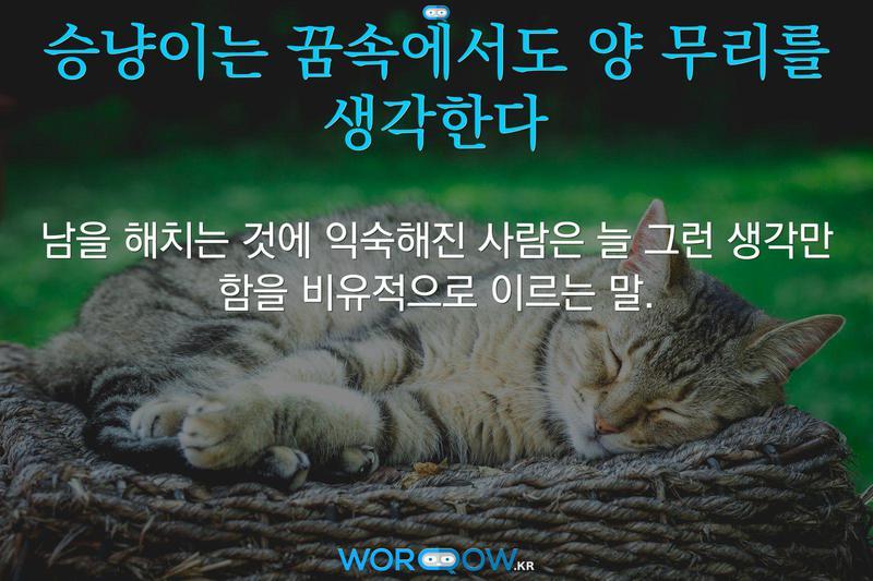 승냥이는 꿈속에서도 양 무리를 생각한다의 의미: 남을 해치는 것에 익숙해진 사람은 늘 그런 생각만 함을 비유적으로 이르는 말.