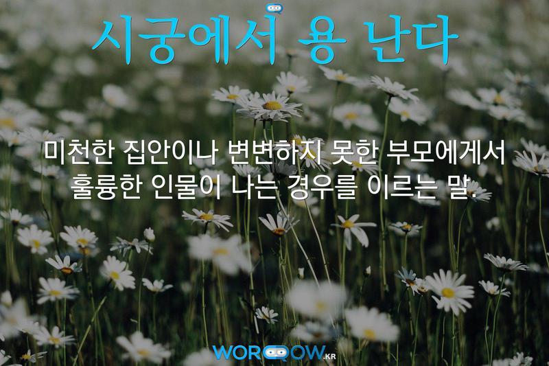 시궁에서 용 난다: 미천한 집안이나 변변하지 못한 부모에게서 훌륭한 인물이 나는 경우를 이르는 말.