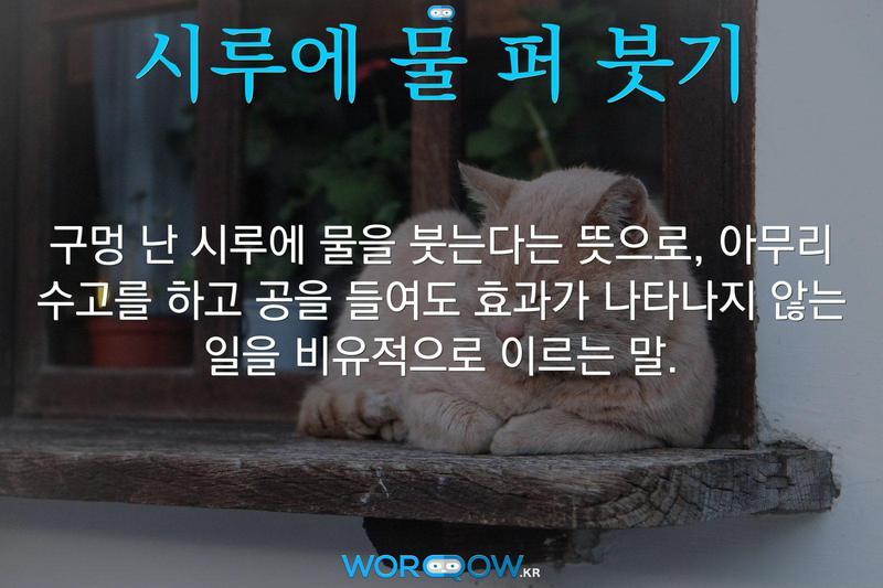 시루에 물 퍼 붓기의 의미: 구멍 난 시루에 물을 붓는다는 뜻으로, 아무리 수고를 하고 공을 들여도 효과가 나타나지 않는 일을 비유적으로 이르는 말.