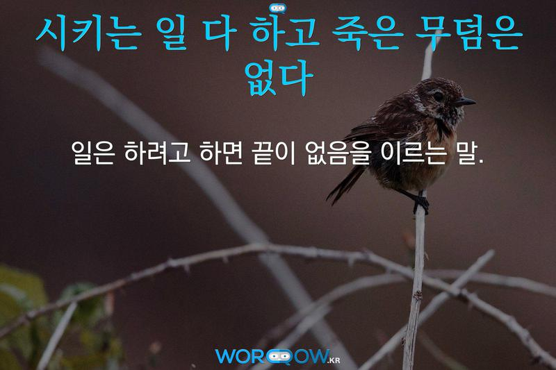 시키는 일 다 하고 죽은 무덤은 없다의 의미: 일은 하려고 하면 끝이 없음을 이르는 말.