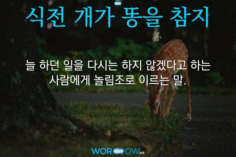식전 개가 똥을 참지의 의미: 늘 하던 일을 다시는 하지 않겠다고 하는 사람에게 놀림조로 이르는 말.