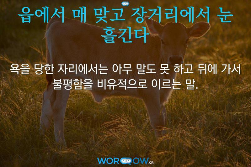 읍에서 매 맞고 장거리에서 눈 흘긴다: 욕을 당한 자리에서는 아무 말도 못 하고 뒤에 가서 불평함을 비유적으로 이르는 말.