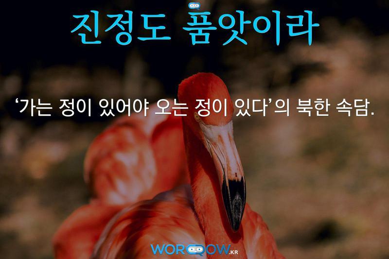 진정도 품앗이라: '가는 정이 있어야 오는 정이 있다'의 북한 속담.