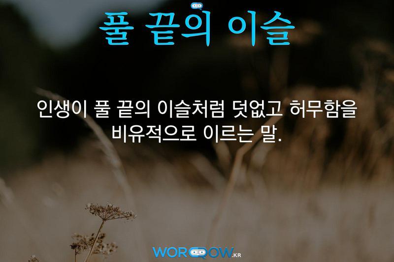 풀 끝의 이슬: 인생이 풀 끝의 이슬처럼 덧없고 허무함을 비유적으로 이르는 말.