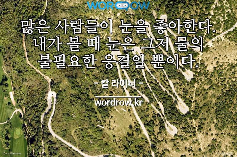 칼 라이너 명언: 많은 사람들이 눈을 좋아한다. 내가 볼 때 눈은 그저 물의 불필요한 응결일 뿐이다.